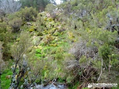 Peña Quemada; turismo aventura; rutas en madrid; actividades de madrid;programa de actividades send